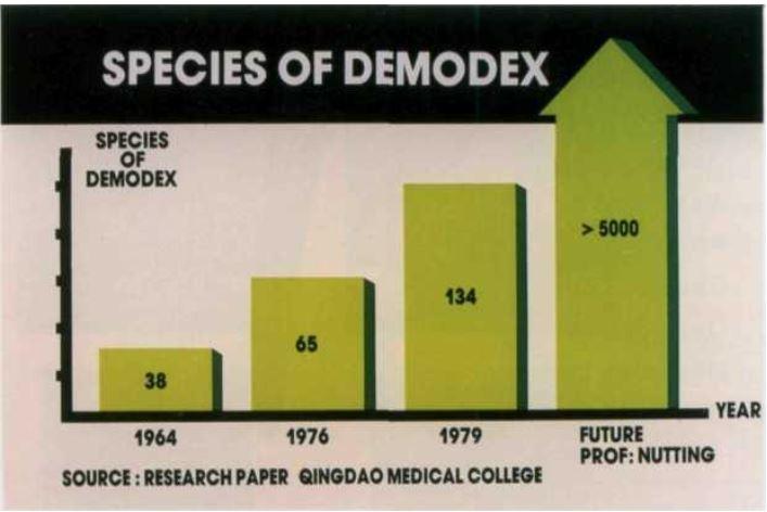 134 вида клещей демодекс